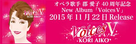 Voices5_banner_2